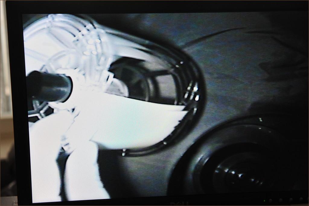 Infrarot Bildwiedergabe auf dem Monitor